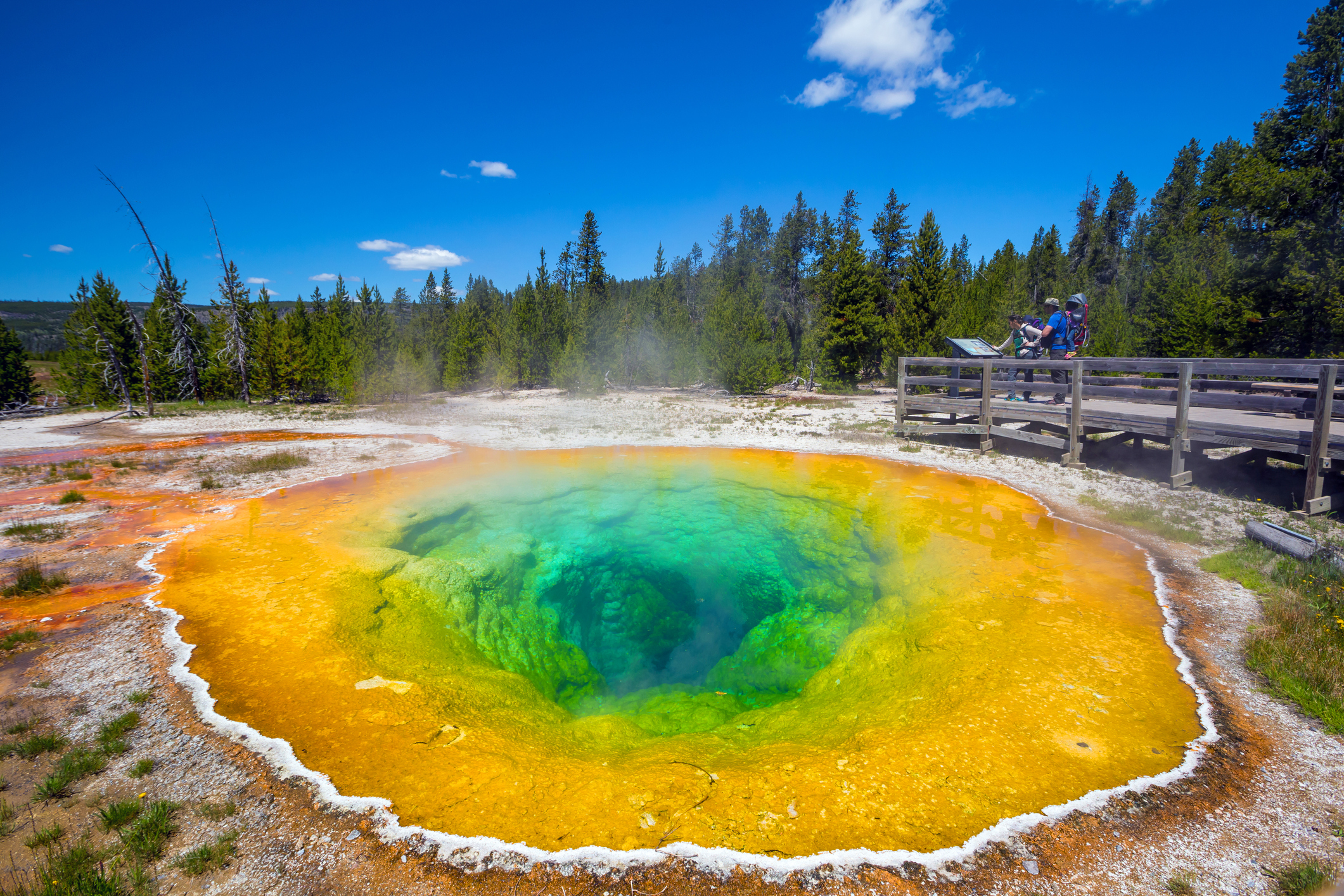 Morning Glory Pool in Yellowstone National Park of Wyoming, USA