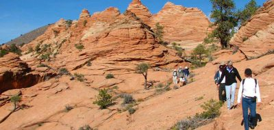 Several people hiking in the daytime in the desert looking Zion National Park