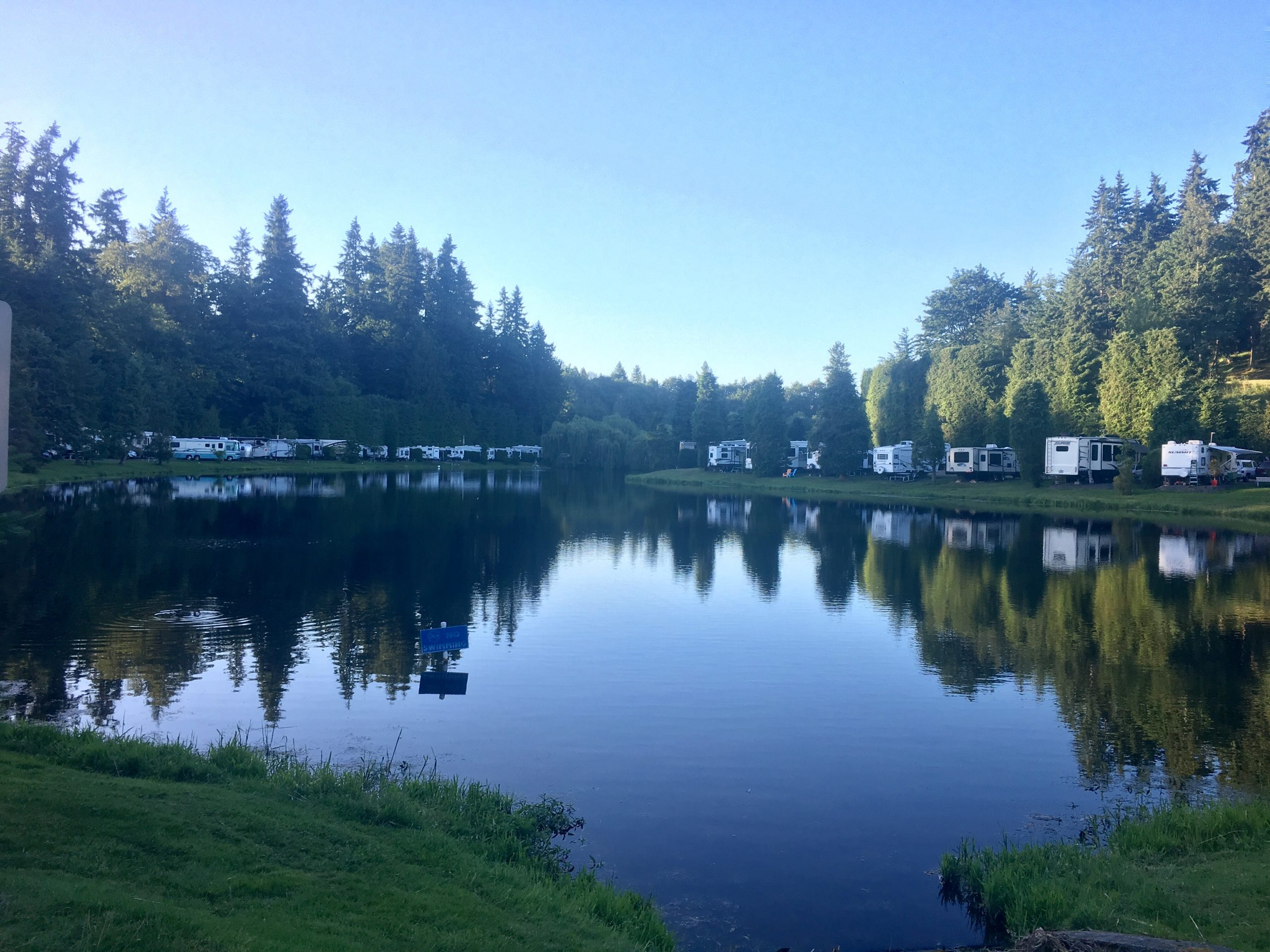 Small Lake in wooded area with RVs parked around it.