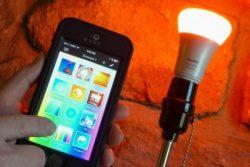 Amazon Alexa Smart Bulbs by Phillips Hue