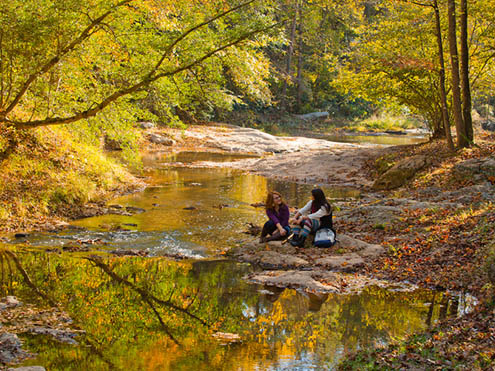 2 girls sitting in the fall of a natural forest beside a river.