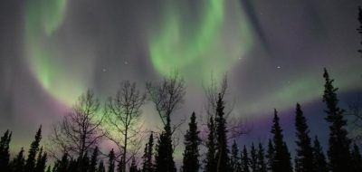 View of the Northern Lights at Tok RV Village
