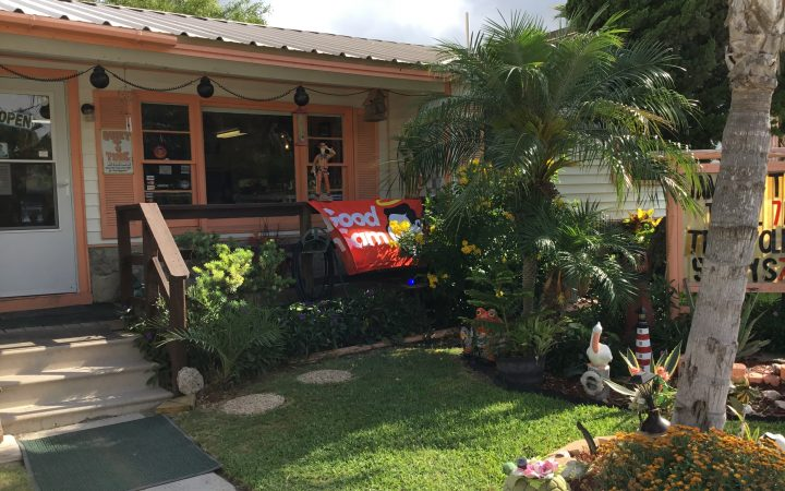 Beautifully landscaped front yard of RV cabin
