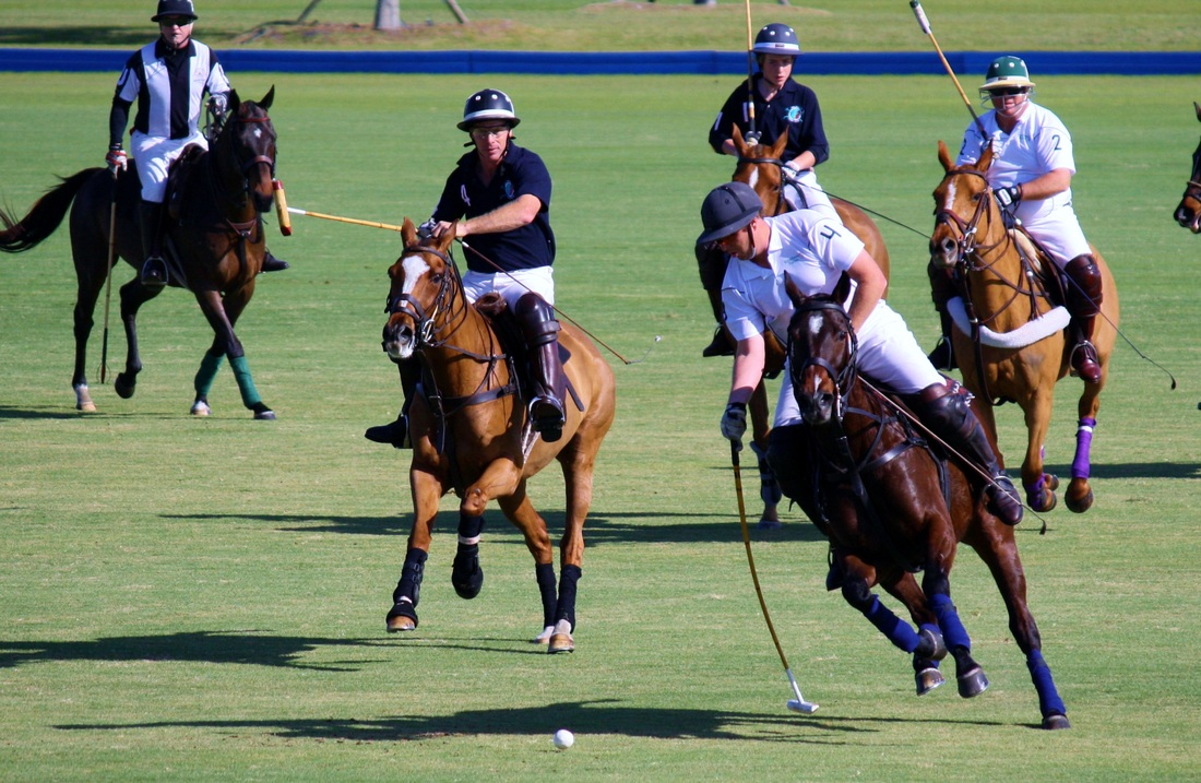 Men riding horses playing polo.
