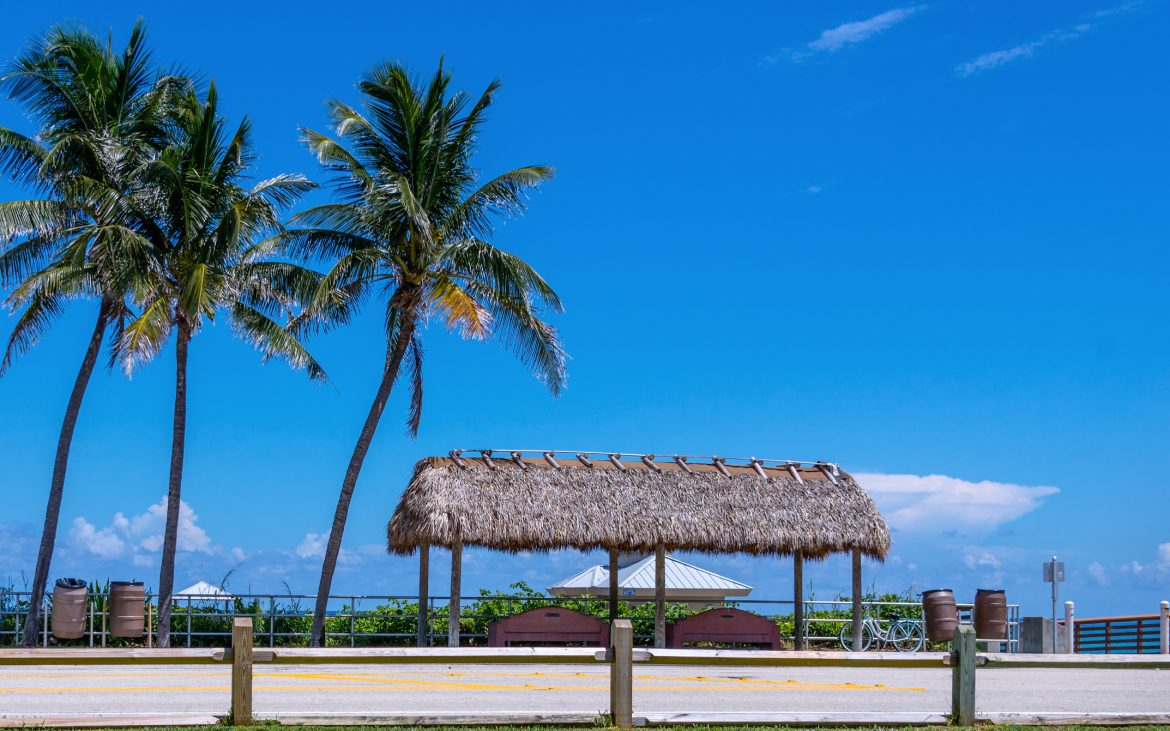 Thatched roof near palm trees at fishing pier with blue sunny skies.