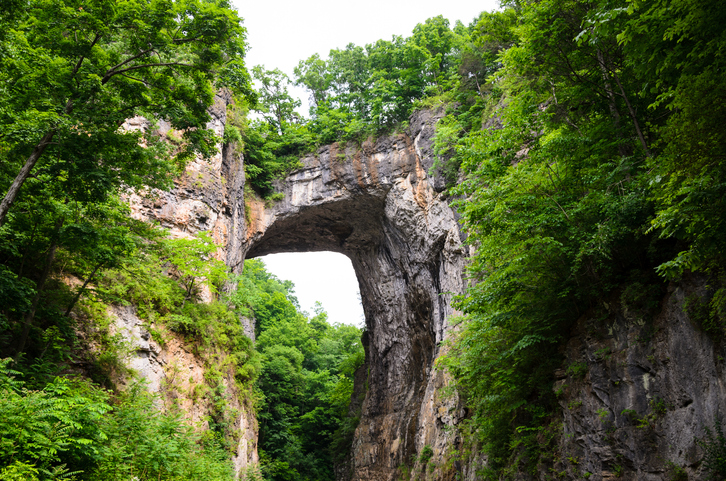 Natural Bridge formed of rock and greenery, Virginia
