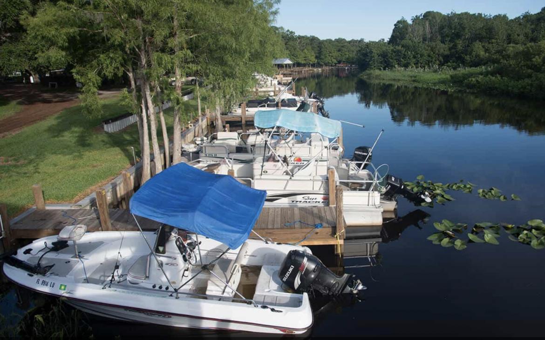boats docked at marina near trees on sunny day