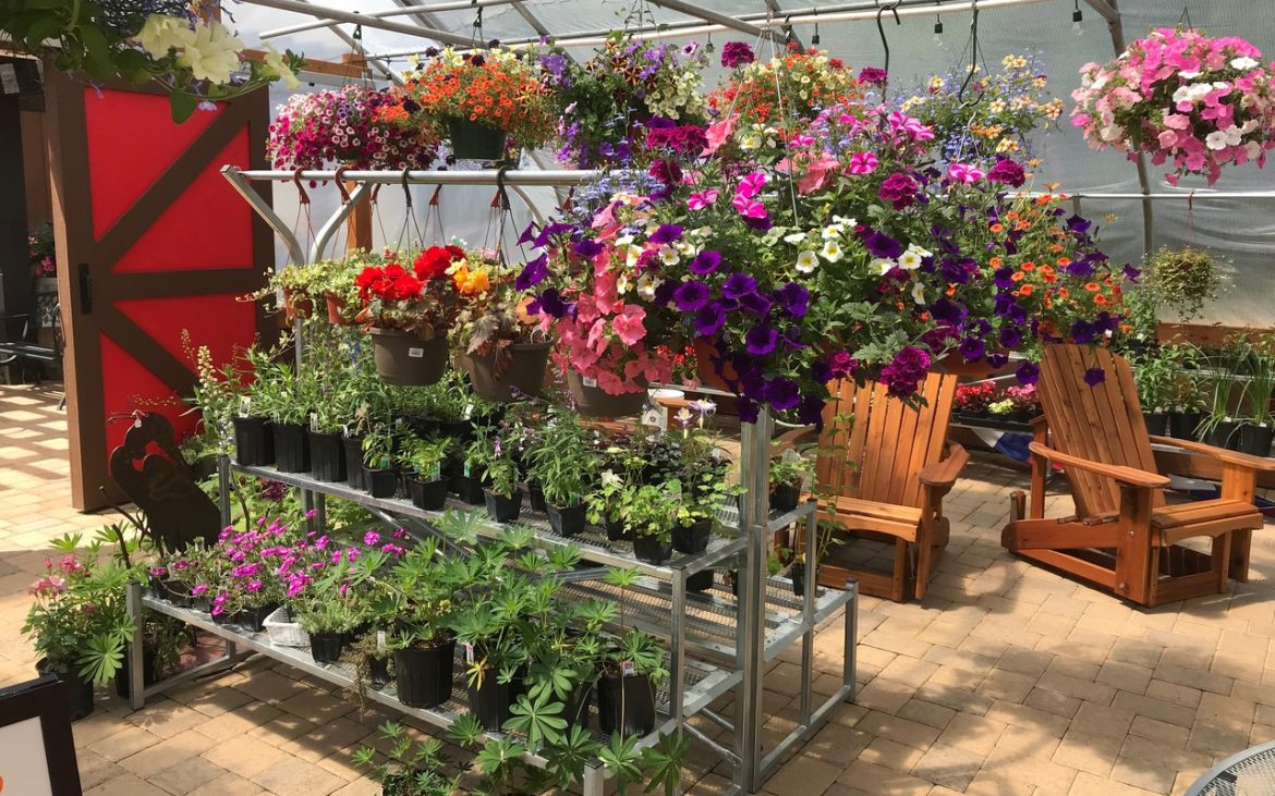 Retail rack of beautiful spring flowers