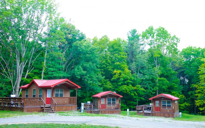 Red camping cabins amid woods.
