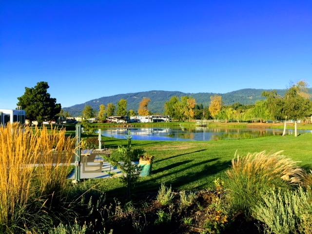 Greens and lake at Premier RV Resorts