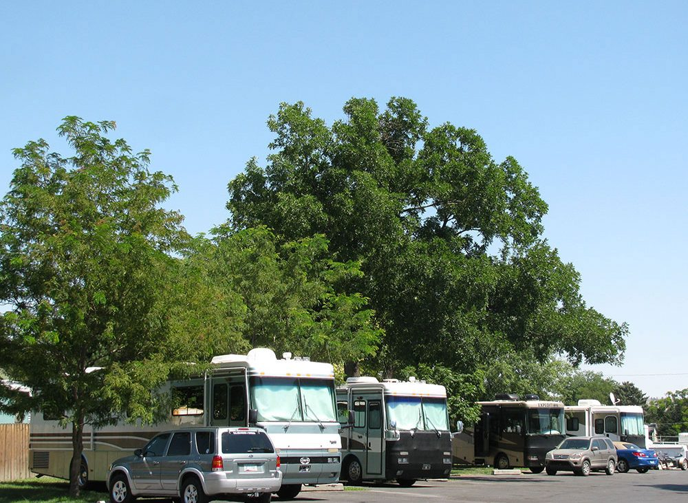 Billings RV Park