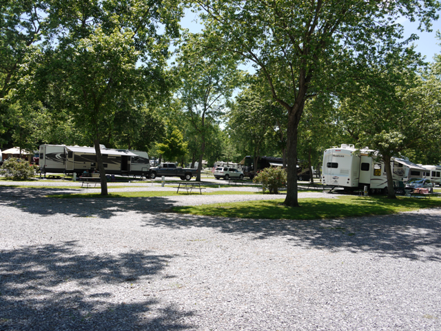RVs parked along gravel road