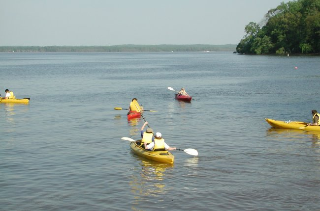 Campers in paddle boats heading away from the shore in the water