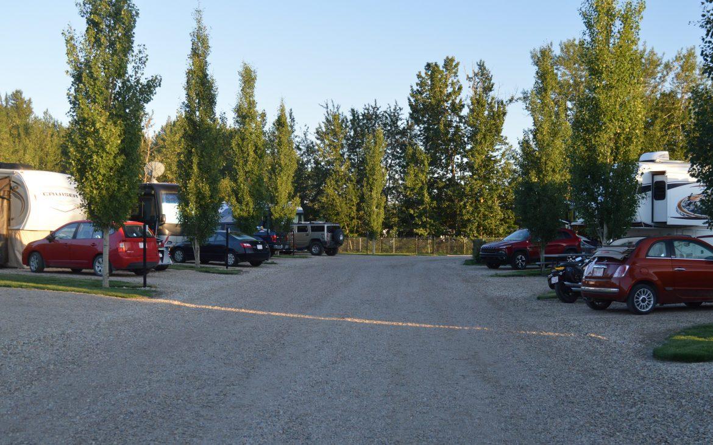 Many vehicles parked along gravel road