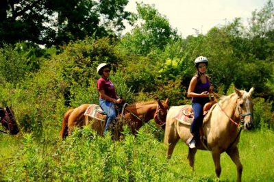 Group on horseback through lush greens