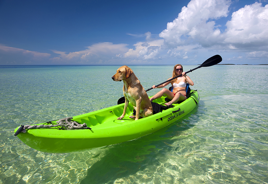 A girl kayaks with a dog in the clear waters of the Florida Keys.