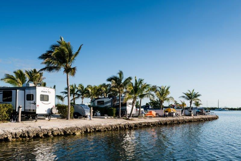 Large trailers parked along beach adorned with palm trees.