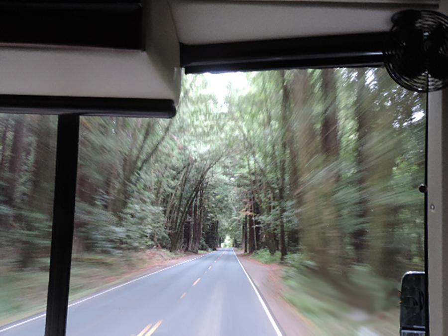 Driving through the Berkshires in Massachusetts.