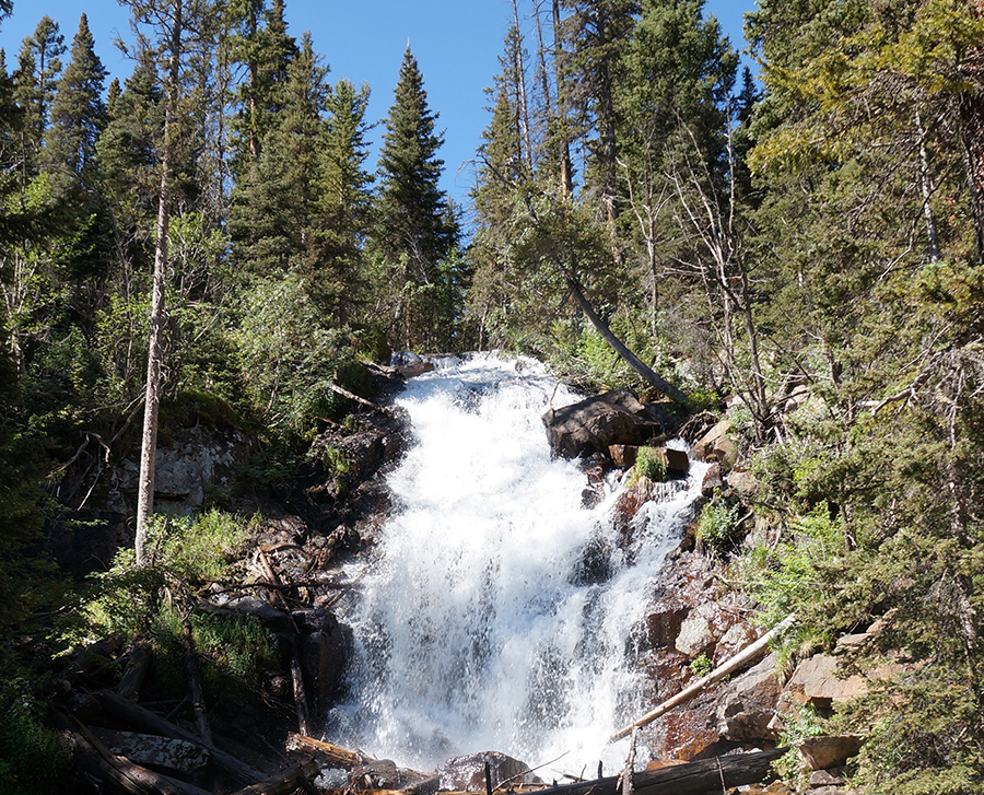 A frothy waterfall cascades through a forest in Rocky Mountain National Park.