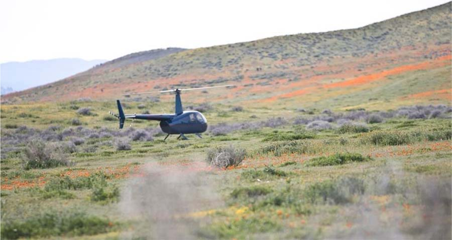 Flower tourists land a helicopter in California's Antelope Poppy Reserve. Photo courtesy of Antelope Poppy Preserve.