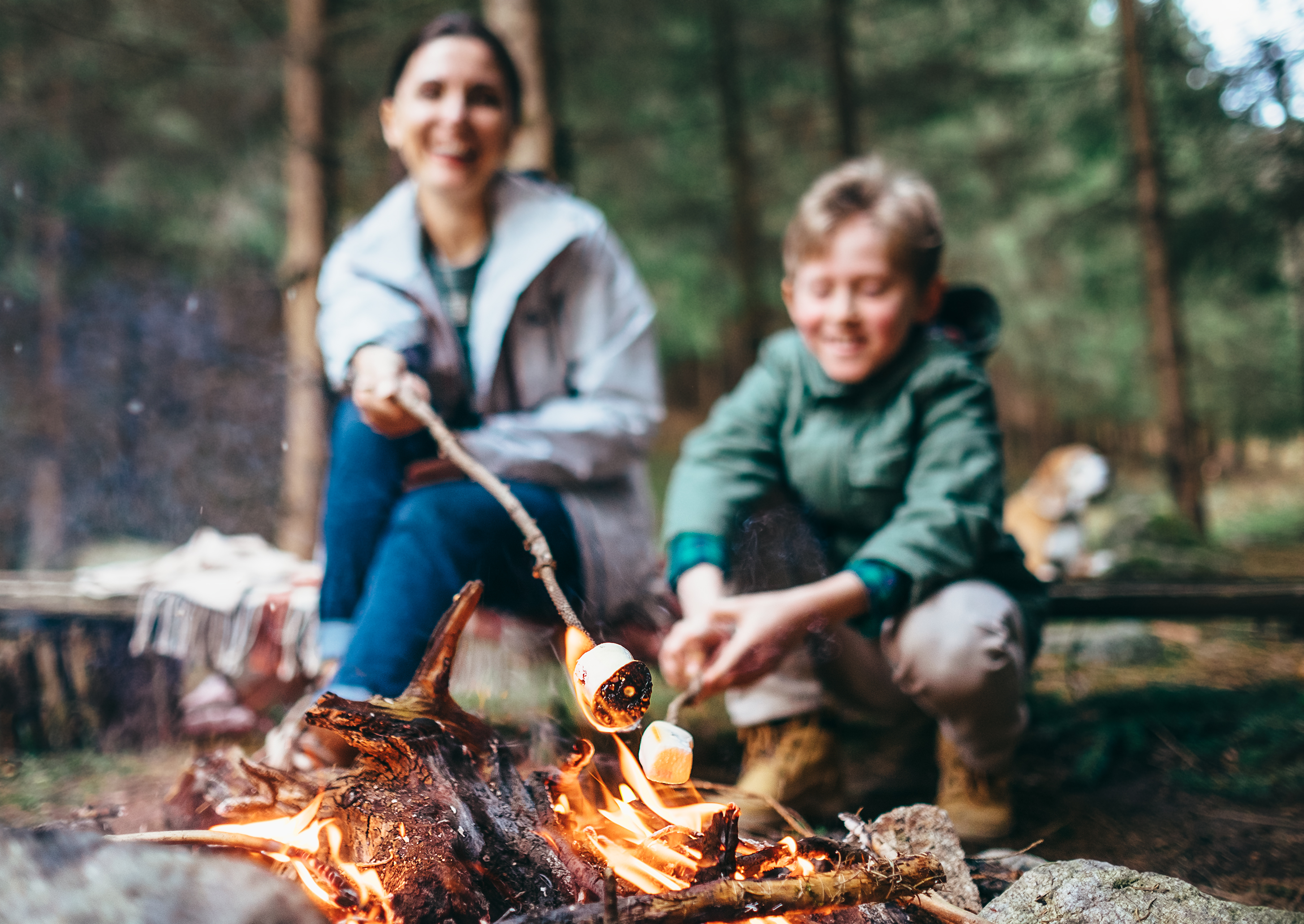 Mother and son cook marshmallow candies on the campfire