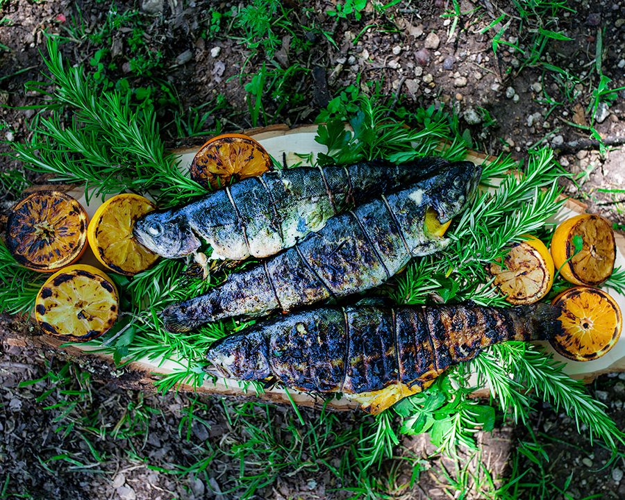 Grilled trout lie on a bed of rosemary, ready to eat!