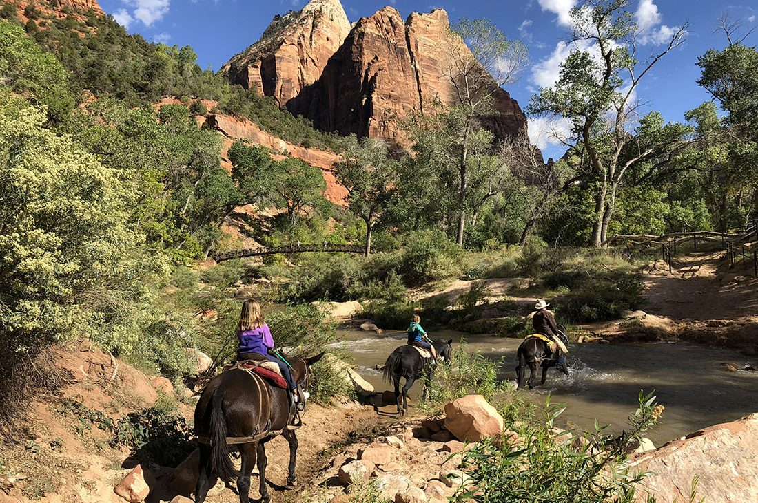Horseback riders follow a trail through Zion National Park.