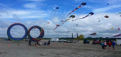 Numerous colorful kites along the shore
