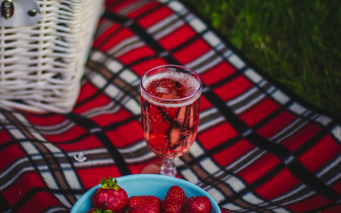 Red plaid rug on grass picnic