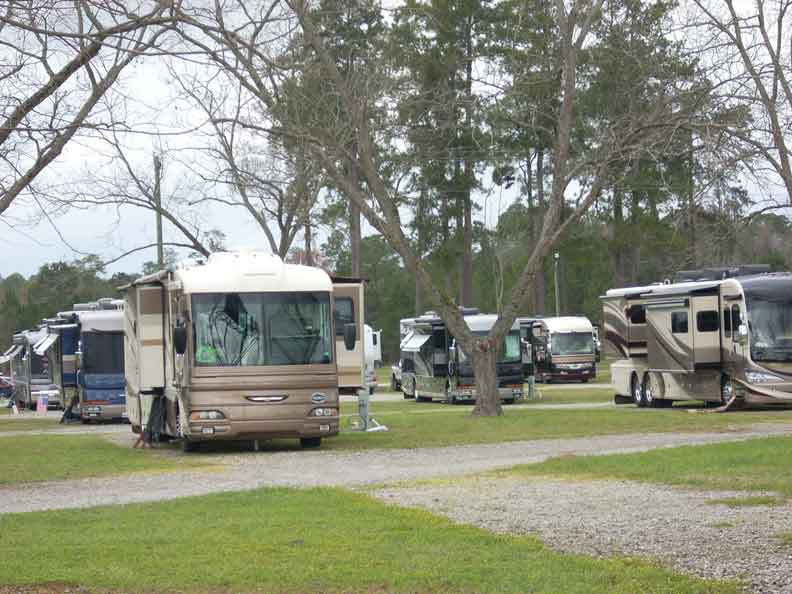 Large brown and tan RVs