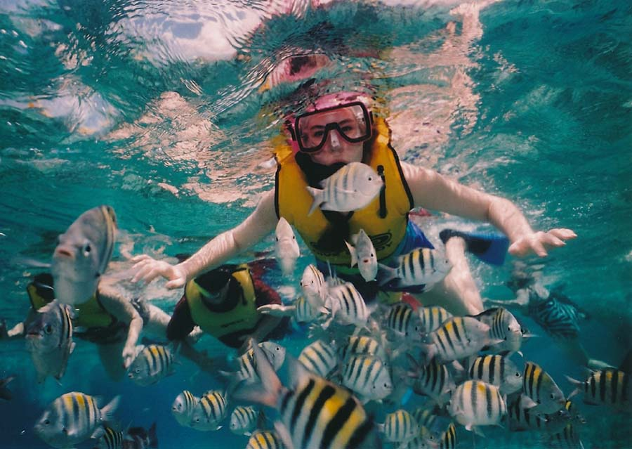 A snorkeler with a school of bright fish.