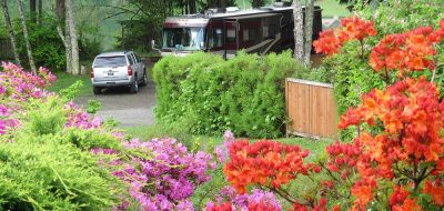 Beautiful and colorful bloomed flowers beside large RV