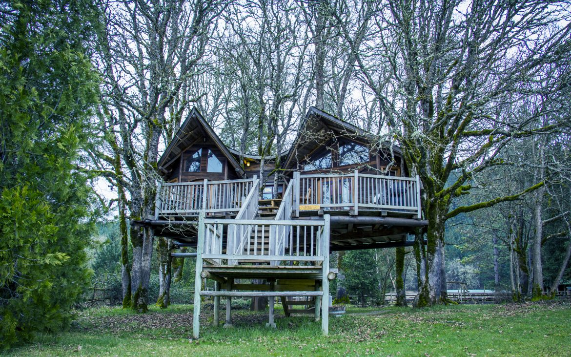 Beautiful treehouse with stairs in Oregon trees