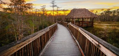 Big Cypress National Preserve at dusk with long walking bridge.