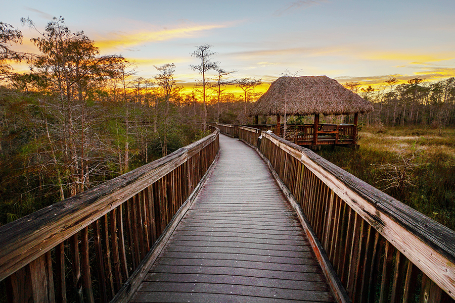 Big Cypress National Preserve at dusk with long walking bridge.
