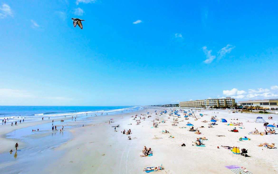 A view of Folly Beach with people on the beach and a seagull flying by