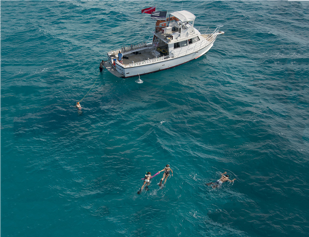 Snorkelers swim just beneath the surface of clear waters in the Florida Keys.