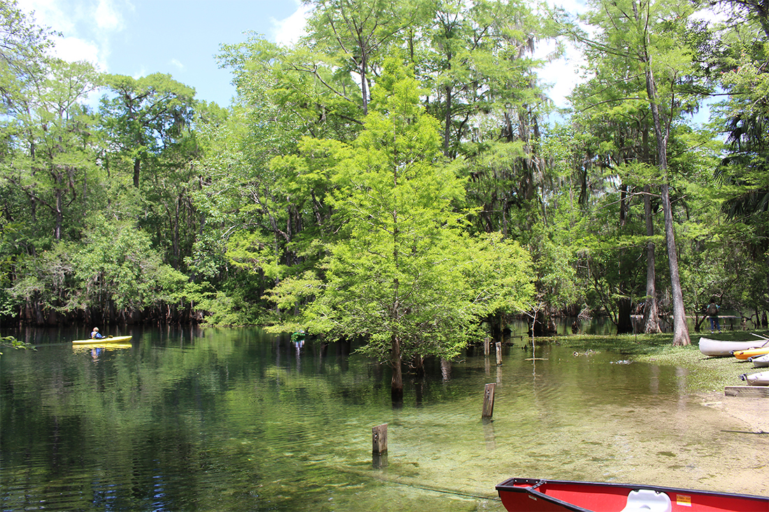 Kayaking in the clear waters of Manatee Springs State Park.