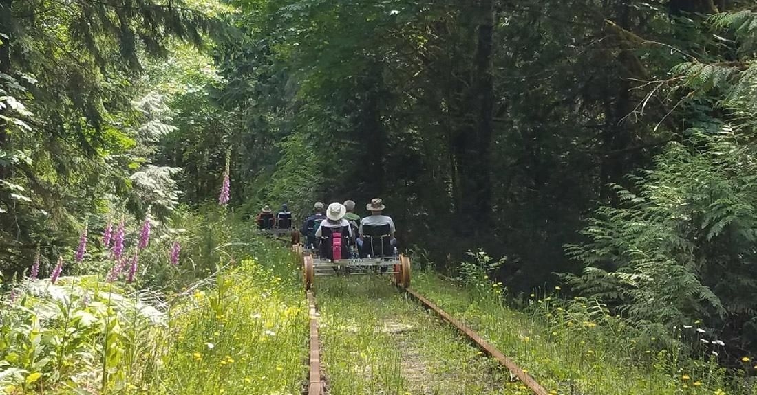 Riding the rails through a lush Oregon forest.