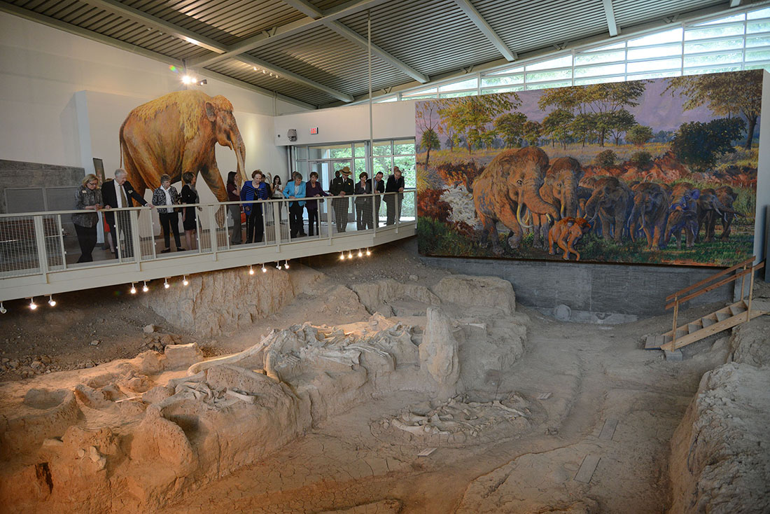 A crowd overlooks an excavation for bones at the Waco Mammoth National Monument.