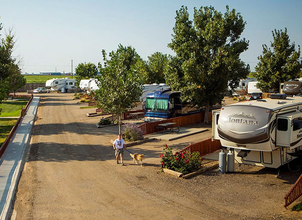 RVs parked along dirt road