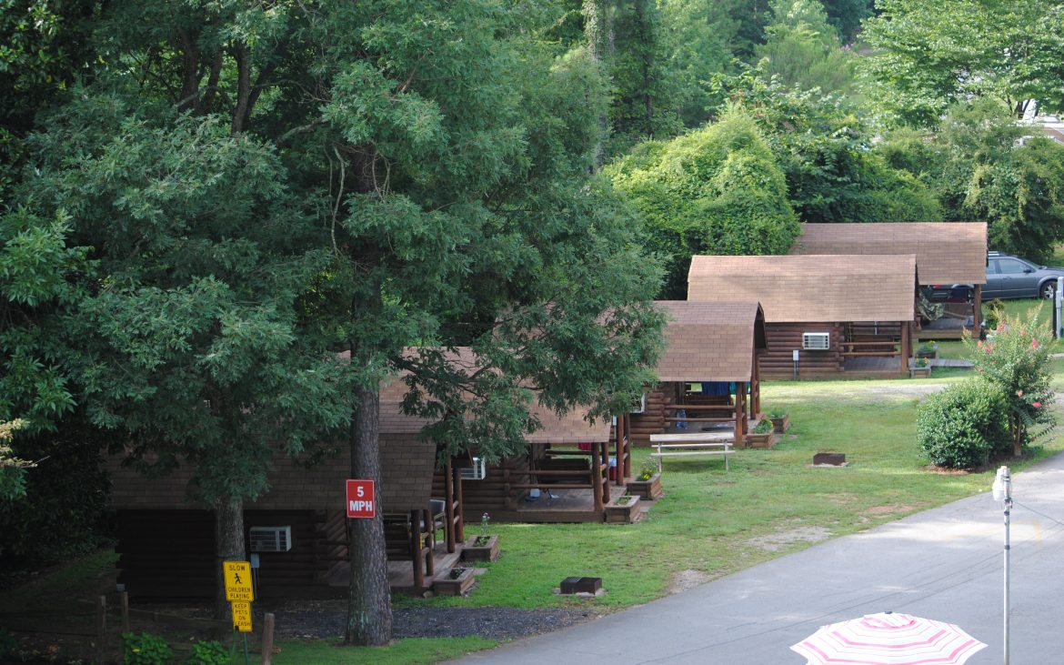 Wooden cabins in heavily wooded area
