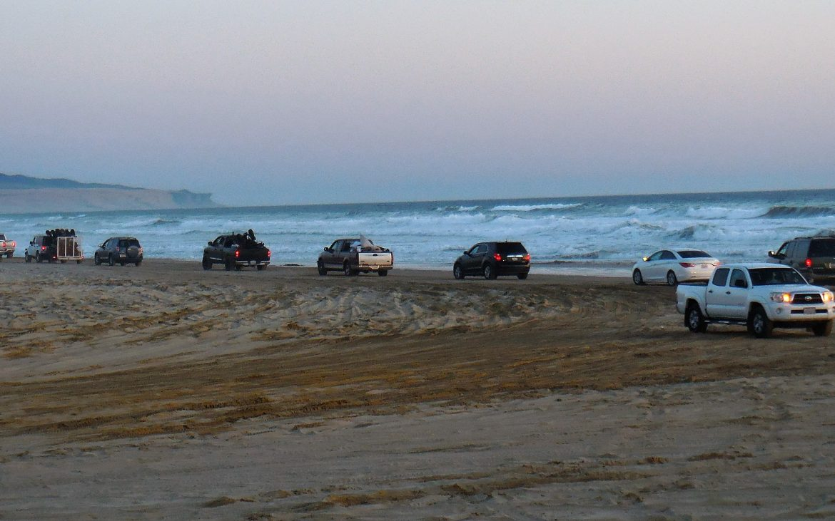 Multiple vehicles along the sand with ocean in background