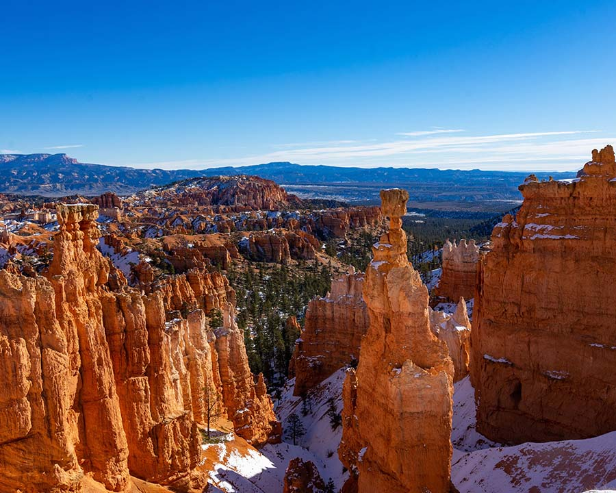 Hoodoos rise eerily in a valley in Bryce Canyon National Park.