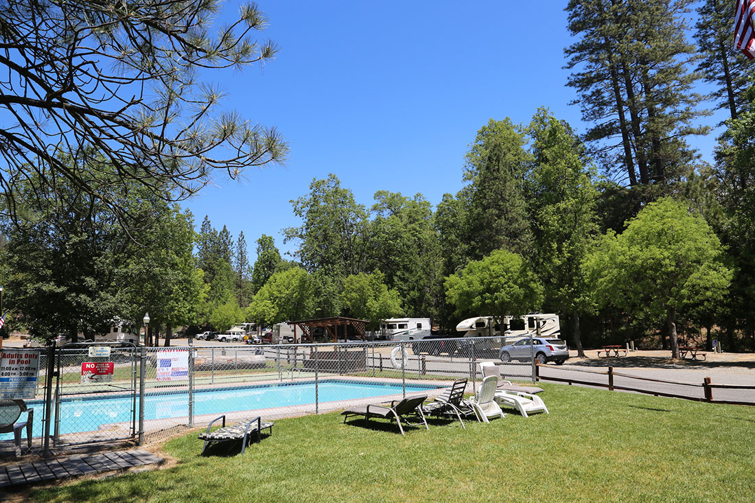 A fenced-in pool with reclines at an RV park fringed with tall trees.