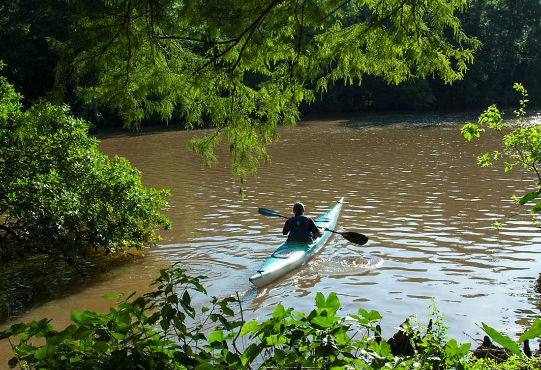 Kayaking on the bayou.