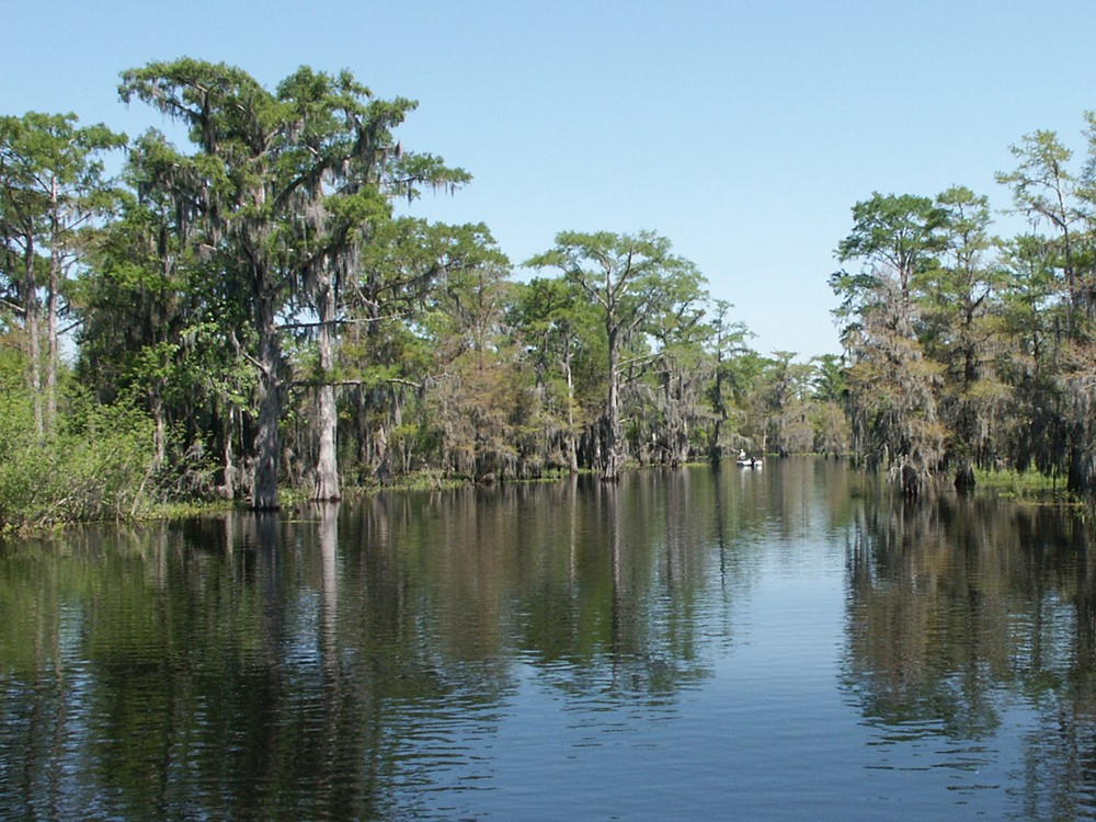 The watery expanse of the The Atchafalaya National Heritage Area.
