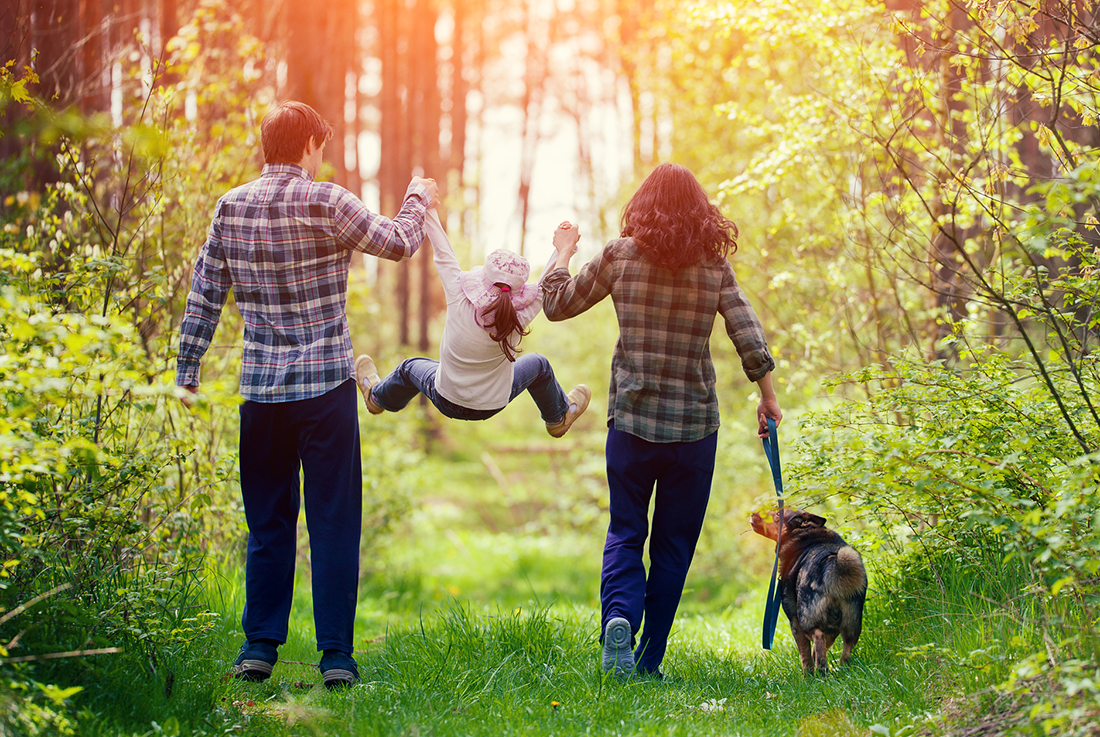 A family takes a hike in a green forest.