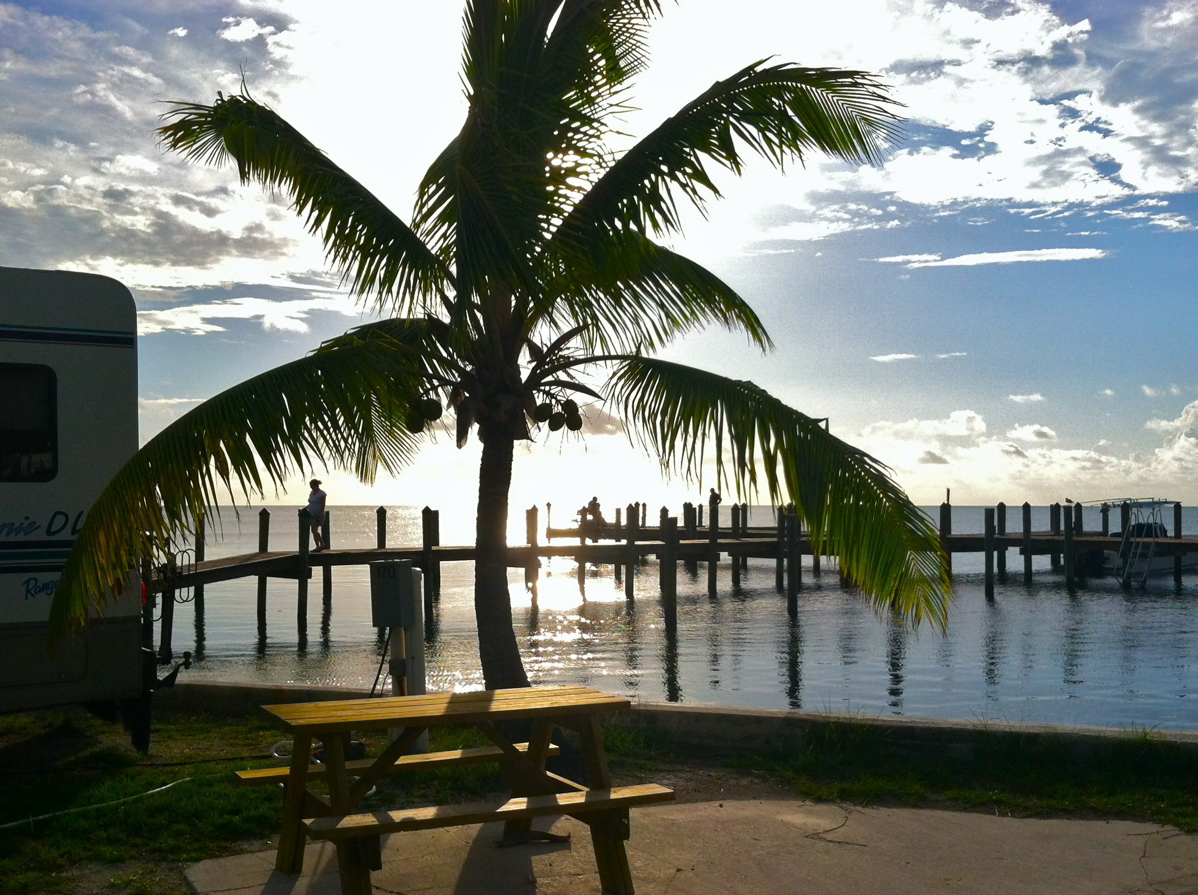 The sun hangs over the horizon of an RV park with a palm tree in the foreground and an angler standing on a pier.