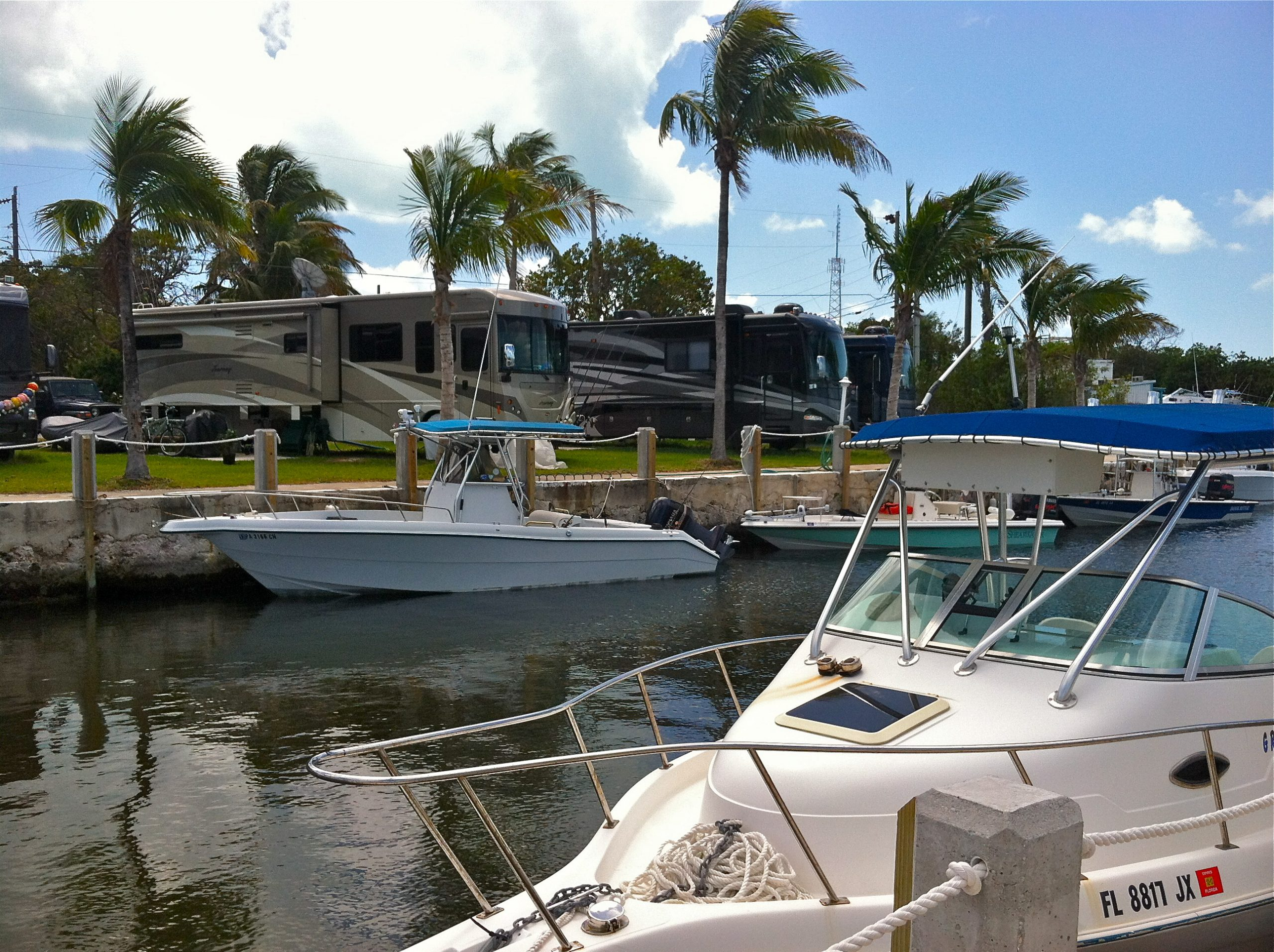 Boats tied to docks with RVs parked in the background under swaying palm trees.